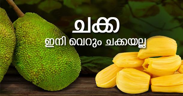jack-fruits