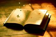 ലോക പുസ്തകദിനം