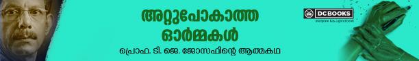 Attupokatha Ormakal header